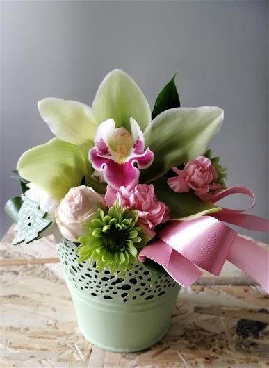 Sveže cveće (5)