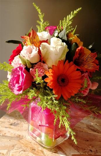 Sveže cveće (6)